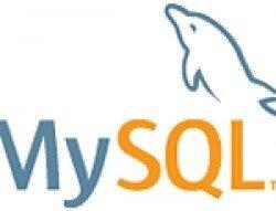 MySQL Database para Web Server