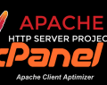 Apache Client Optimizer