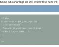 Adicionar tags do post Wordpress sem link