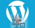 Escolher Hospedagem WordPress Itens Importantes