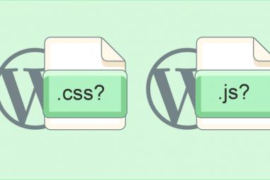 Remover Versões de JS e CSS no WordPress e Acelerar o Site